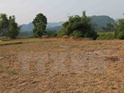 Phu Yen actively tackles drought