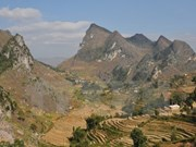 Nature sanctuary to be established in Ha Giang province