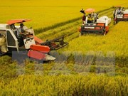 Canada hopes to expand trade in Mekong Delta