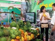 Hanoi to open agriculture and craft village fair