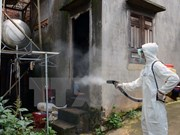 Dong Nai: Dengue fever cases increase sharply