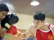 Vietnam earn berths at continental boxing champs