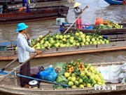 Mekong Delta region boosts tourism products