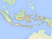 Strong quake hits Indonesia, no tsunami warning issued
