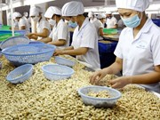 Japan's Wakayama interested in farm production with Vietnam