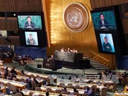 Vietnam supports 2030 Agenda for sustainable development