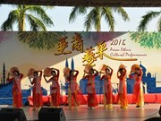 Vietnam attends ethnic cultural event in Hong Kong