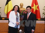 Deputy PM receives visiting President of Belgian Senate
