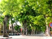 Hanoi works towards green city