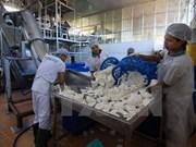 Mekong River Delta enterprises prepare for TPP