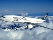 Air New Zealand to consider direct route to Vietnam