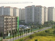 Vietnam needs cheaper social housing