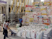 Rice export deals hit record level in October
