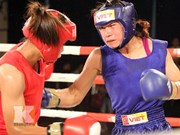 Vietnam wins gold at international boxing tournament