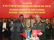 Vietnam, South Africa hold defence policy dialogue