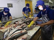 Tra fish industry needs makeover