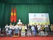 Japanese NGO donates 30 wheelchairs to the needy in Thai Binh