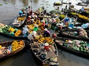 River-based tourism to boom in Mekong Delta
