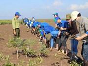 Foreign NGO aid poured into Ben Tre