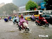Hanoi accelerates construction of flood warning system