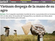 Argentine press: Vietnam takes off from agriculture