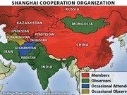 Shanghai Cooperation Organisation promotes ties with ASEAN