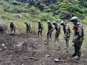 Vietnam, China join hands in mine clearance along border