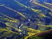 Photo contest promotes Vietnam's tourism