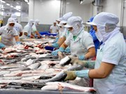 Social responsibility practice to promote fisheries sector's standing