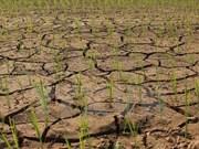 Deputy PM asks for stronger climate change respond
