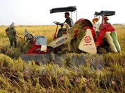 Crop production needs restructuring