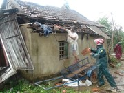Extreme weather events cause 660 million USD losses a year