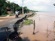 UNDP helps Vietnam battle climate change