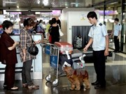 Noi Bai Airport strengthens customs checks before Tet