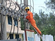 Islet of Ly Son Island to get power access before Tet
