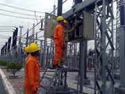 EVN to not adjust power price in 2016