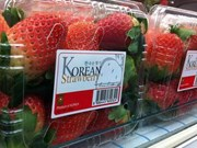 RoK fresh strawberry to be exported to Vietnam
