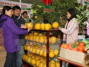 Spring Fair to offer consumer goods for Tet