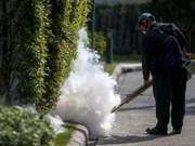 Thailand calms public fear over Zika virus