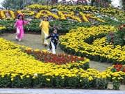 Mekong flower streets in bloom