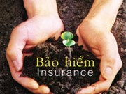 Vietnam's insurance industry looks to further expansion