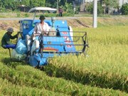 Ha Nam: additional 15 communes declared new rural areas