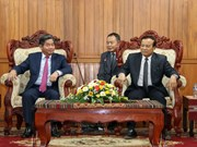 Vietnamese, Lao ministries' cooperation applauded