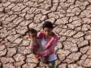 BIDV provides financial support for drought-hit localities