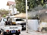 Khanh Hoa takes drastic measures to curb dengue fever, Zika virus