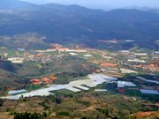 Da Lat plans to build 490ha safari park