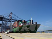 Cai Mep int'l port welcomes large container ship