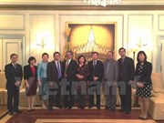 Vietnamese Ambassador wishes Lao Embassy happy New Year