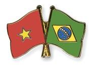 Vietnam, Brazil boost friendship
