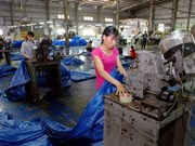 Vietnam's plastic sector eyes alternatives